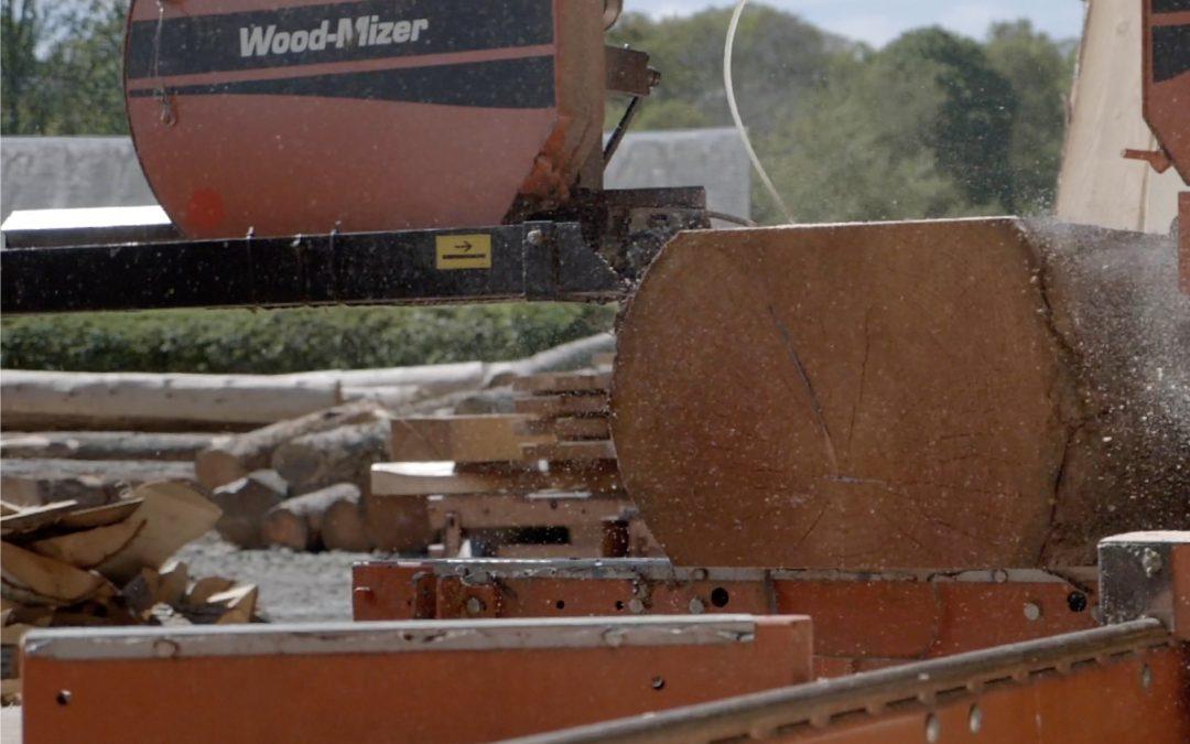 Jobs: Sawyer / wood machinist